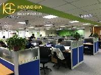 Thi công vách ngăn văn phòng khung nhôm nỉ kính giá rẻ tại xưởng